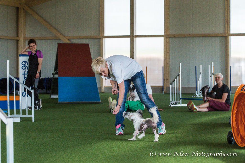 GP--Fotos-Hundesporthalle-Dahlem-010