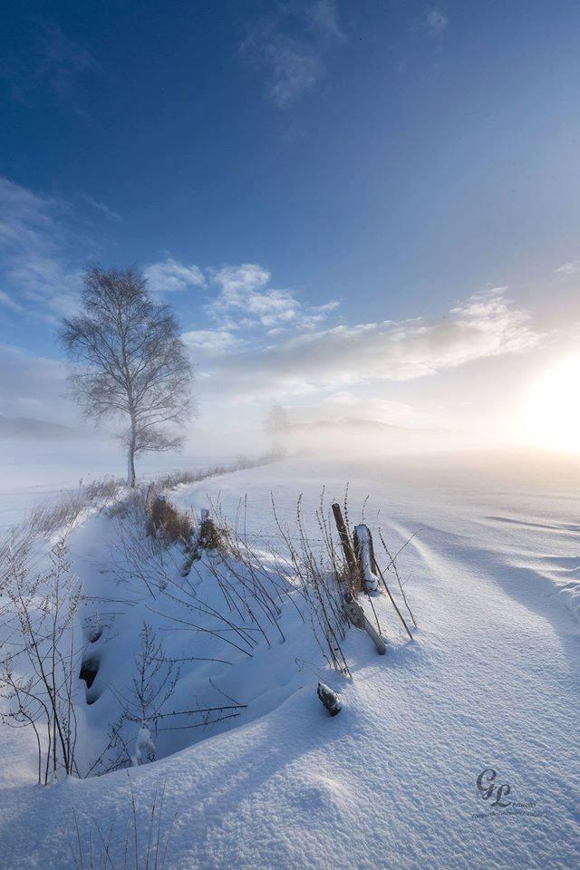 Verschneite Eifel