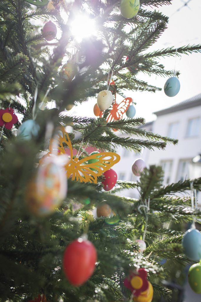 Café T: osterbaum folgt Weihnachtsbaum