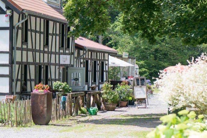 Haus Grünental: Wo der Eisvogel zu Hause ist
