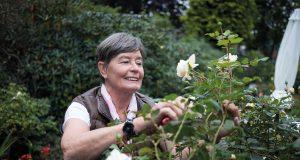 Sigrid Liedtke, 1. Vorsitzende der Rosenfreunde Aachen in ihrem Paradies