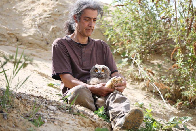 Stefan Brücher beringt einen jungen Uhu.